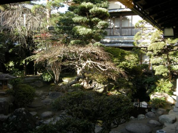 nakaniwa_20081225_01