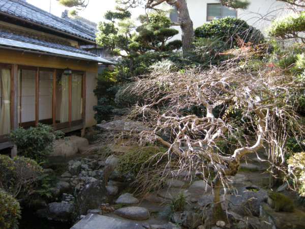 nakaniwa_20081225_02