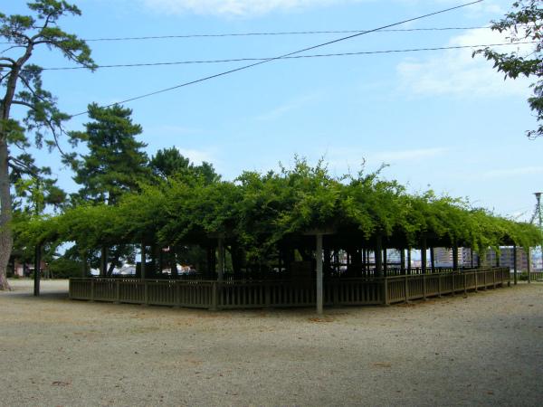 shiroato_20090822_01